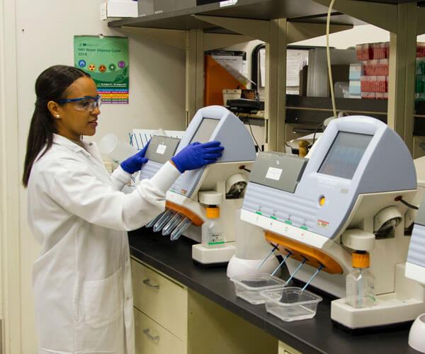 Medical Equipment Servicing - Tasmania-wide: Biomedics